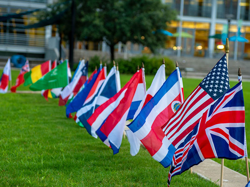 A grouping of different countries' flags on the lawn in front of the LBC.