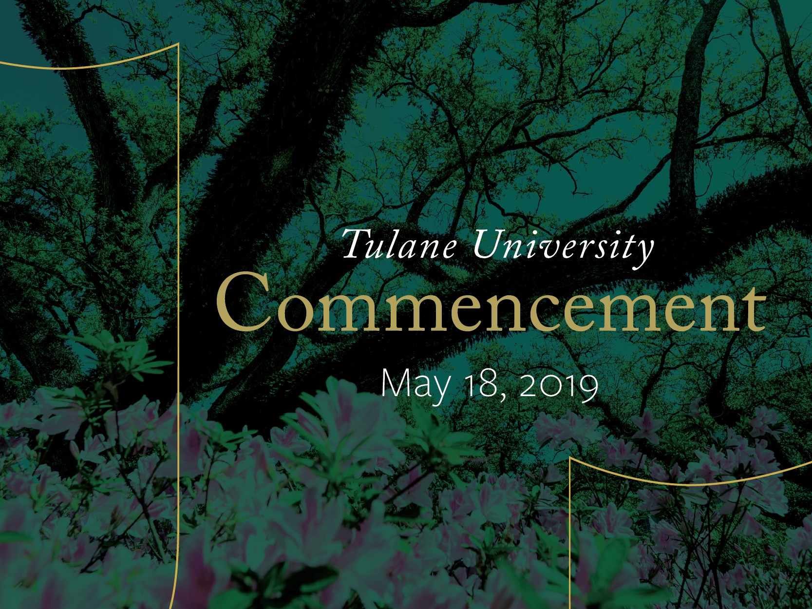Commencement 2019 graphic and link