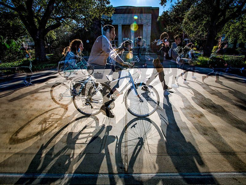 Bikes cast shadows on McAlister