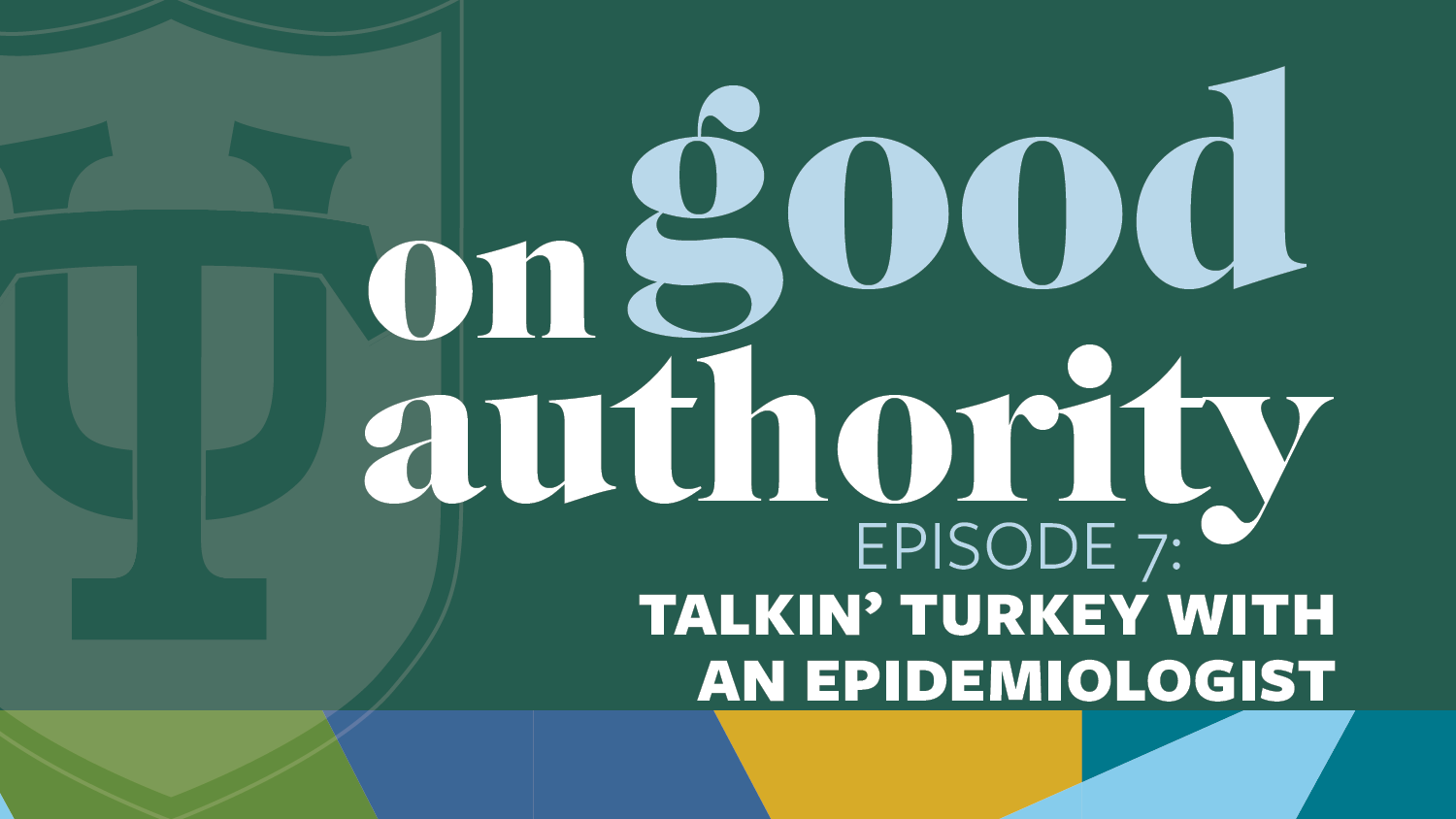 Episode 7: Talkin' Turkey with an Epidemiologist