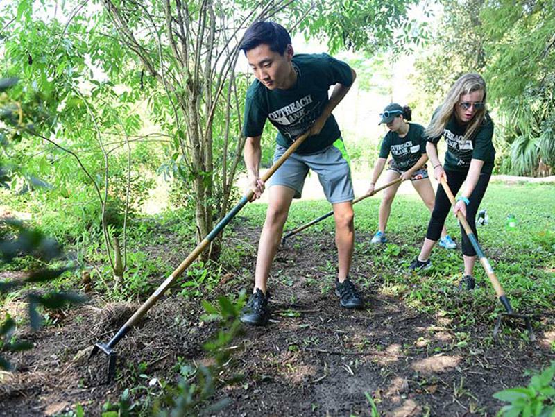 First-year students Alex Yoon, Kristen Courtney and Clementine Furber volunteer at Grow Dat Youth Farm in City Park.