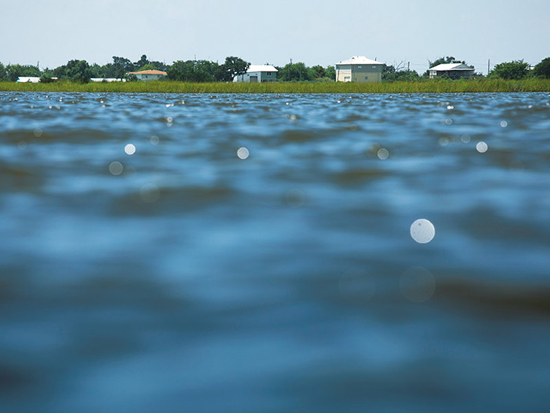 Water encroaches on houses on Isle de Jean Charles, a narrow ridge located in Terrebonne Parish, Louisiana.