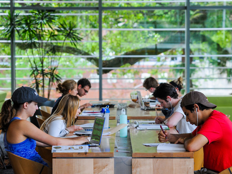 Students sit in rows at tables in a campus study space