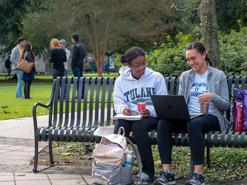 Students studying on campus bench